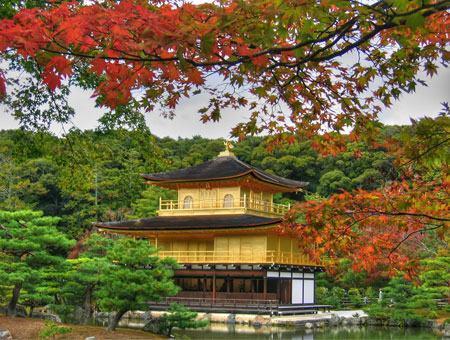 Cục xuất nhập cảnh Nhật Bản gọi điện nên chuẩn bị những gì?