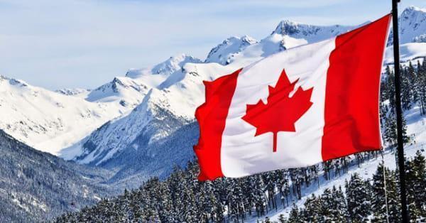 Tệ nạn lừa đảo ở Canada và cách phòng tránh
